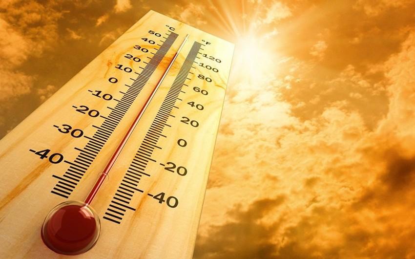 В Азербайджане температура воздуха прогреется до 41 градуса