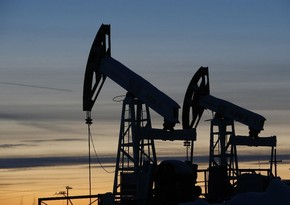 Belarus discovers 8 new oil deposits over past five years