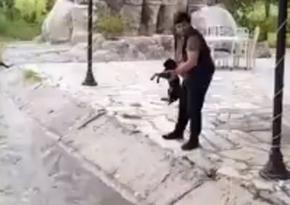 İti su kanalına atan şəxs məsuliyyətə cəlb olunub