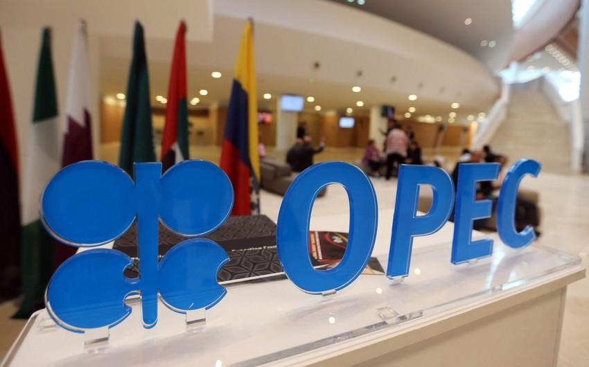 OPEC+ iclası dekabrın 3-nə təxirə salındı