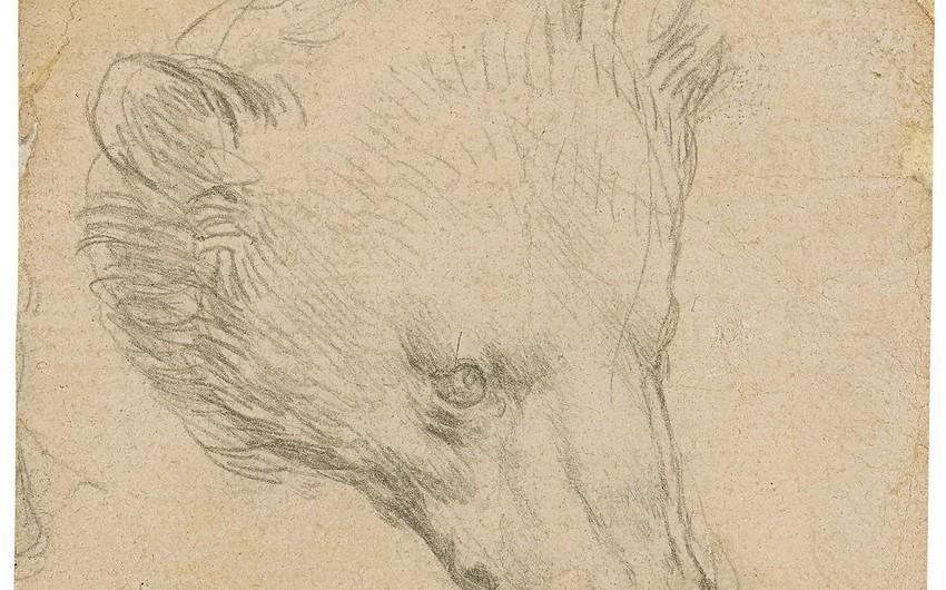 Набросок Леонардо да Винчи продан за крупную сумму