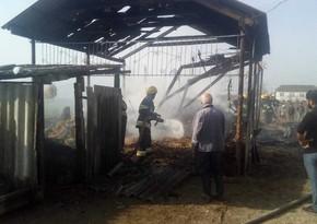 Zərdabda tövlədə  7 ton ot bağlaması yandı