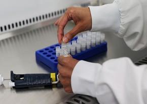 Ученые выяснили, какие животные восприимчивы к коронавирусу
