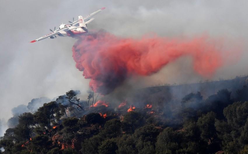 Пожары уничтожили на юге Франции 430 га леса