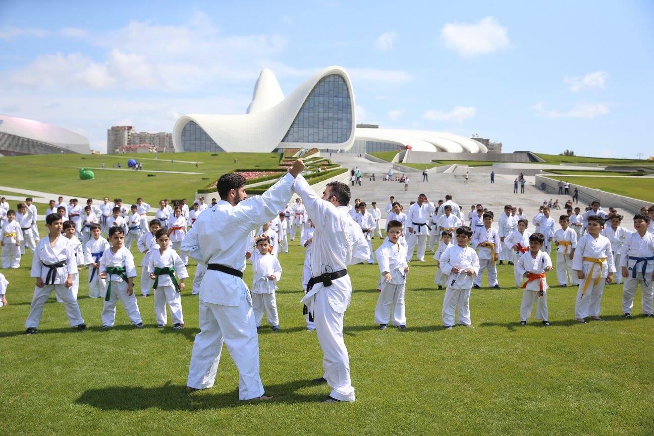 Famous Azerbaijani athlete may open martial arts school