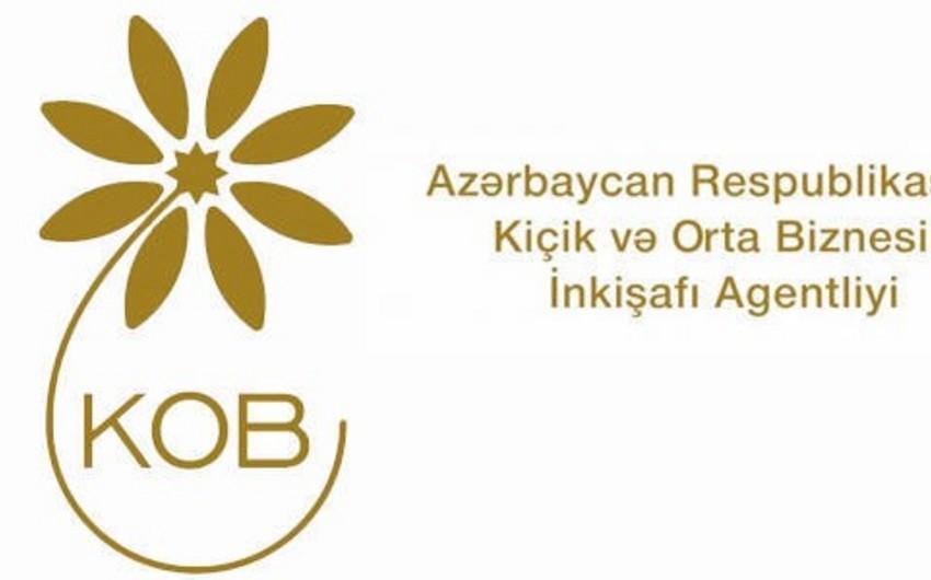 Kiçik və Orta Biznesin İnkişafı Agentliyi maliyyə hesabatını açıqlayıb