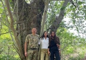 Мехрибан Алиева поделилась публикациями из Зангиланского района в Instagram