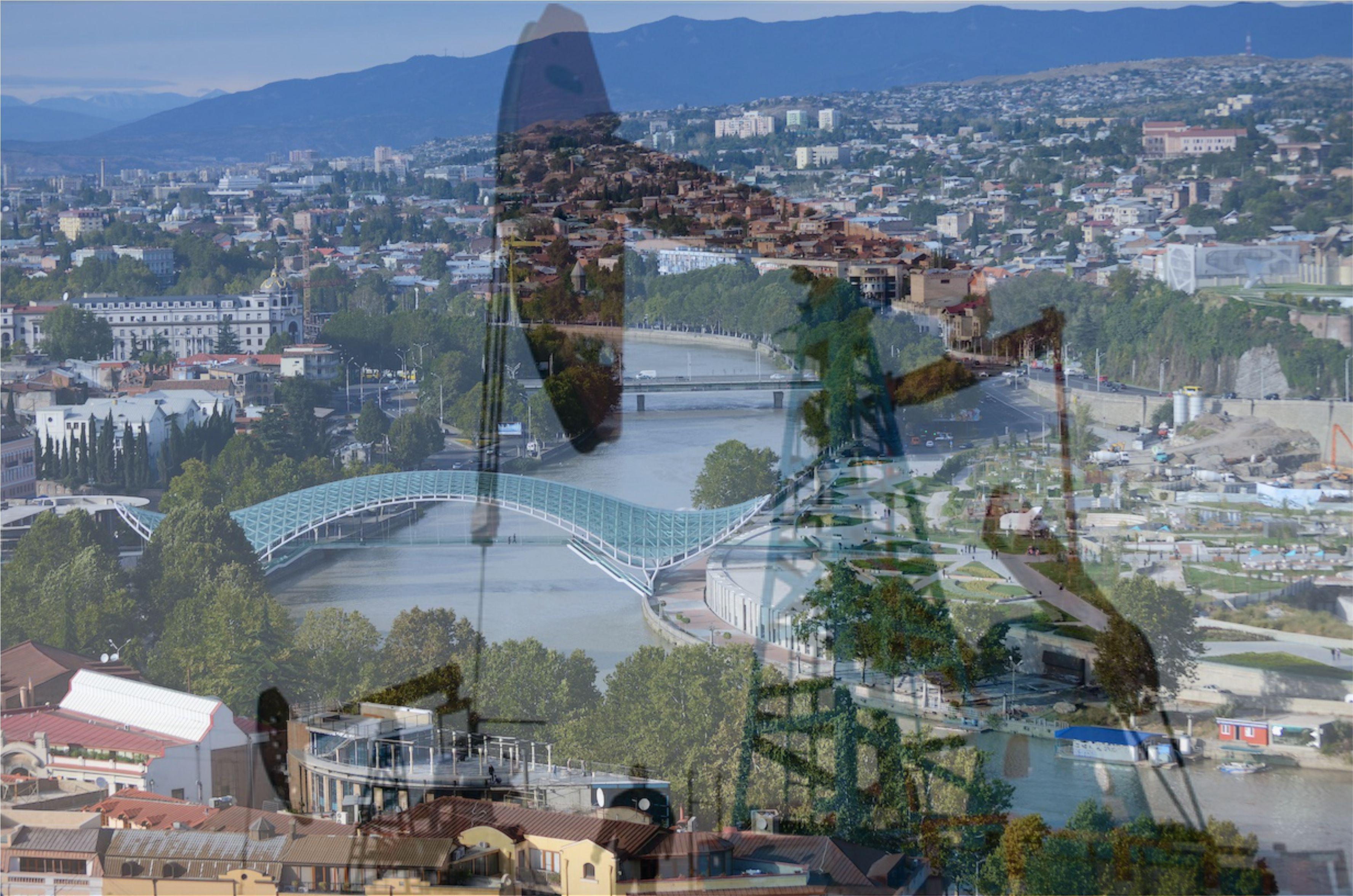 SOCAR-ın Gürcüstanda apardığı danışıqların təfərrüatları açıqlanıb