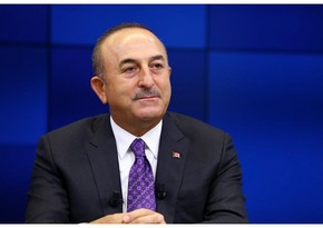 Turkish FM to attend 2nd Berlin Conference