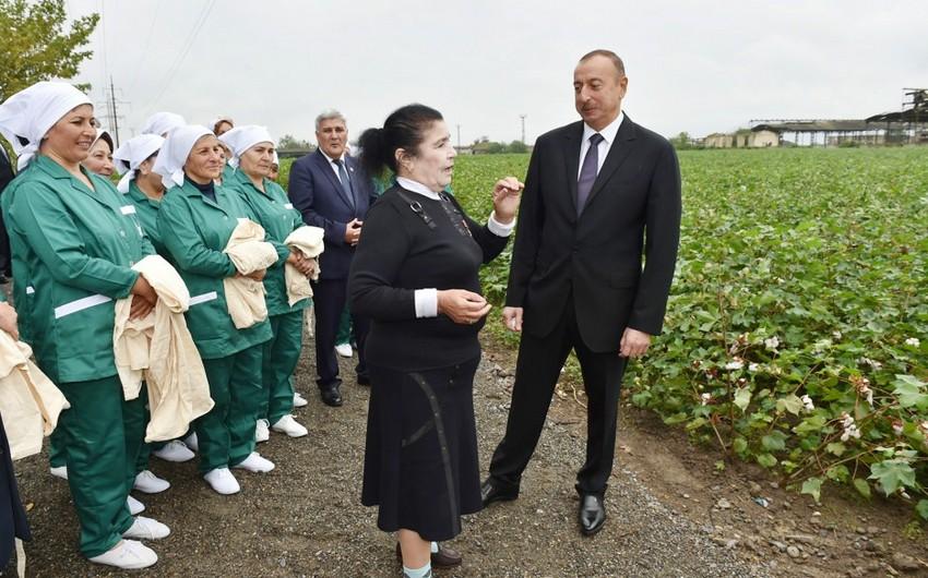Президент Ильхам Алиев находится с визитом в Сабирабадском районе
