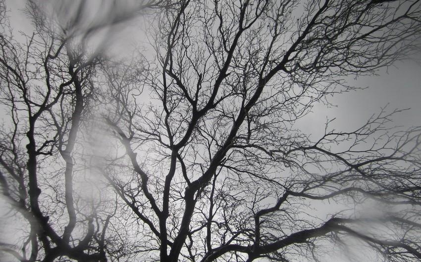 Sabah Azərbaycanda hava şəraiti yağmurlu olacaq, rayonlara dolu düşəcək