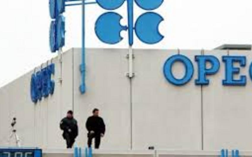 OPEK neft hasilatını azaldıb