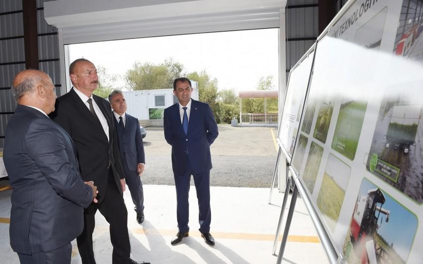 Prezident İlham Əliyev Lənkəranda çəltik zavodunun açılışını edib