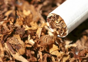 Azerbaijan sharply reduces export of tobacco, its industrial substitutes