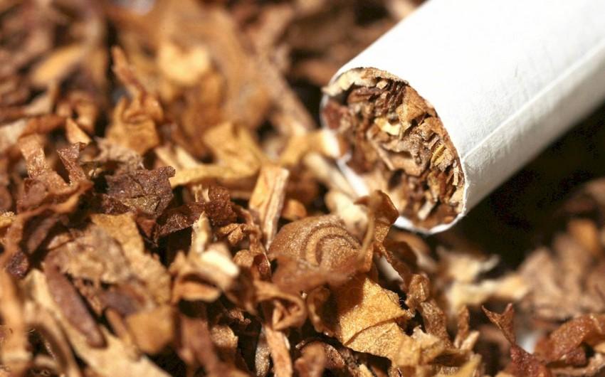 Азербайджан резко сократил экспорт табака и его промышленных заменителей