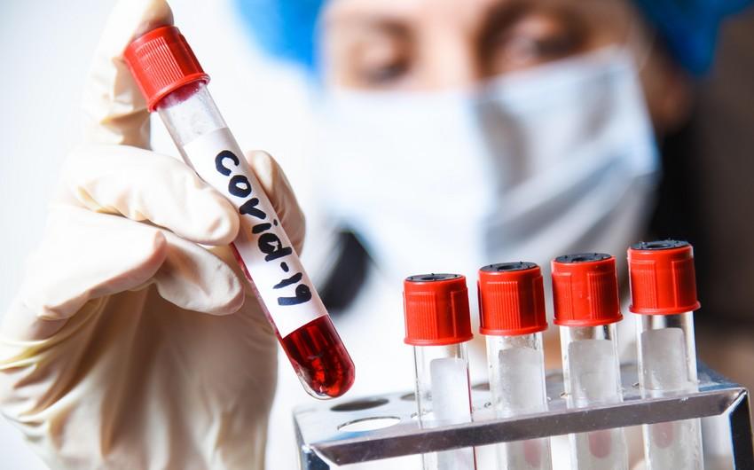 В Азербайджане выявлено 278 новых случаев заражения COVID-19