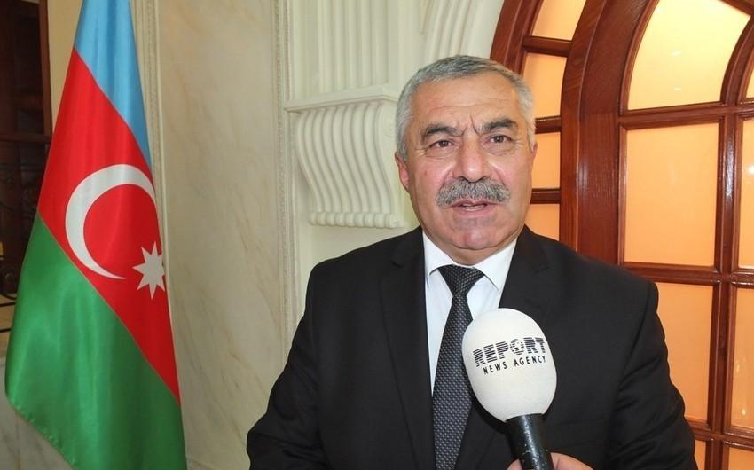 Один из вице-спикеров парламента Грузии может стать главой группы дружбы с Азербайджаном