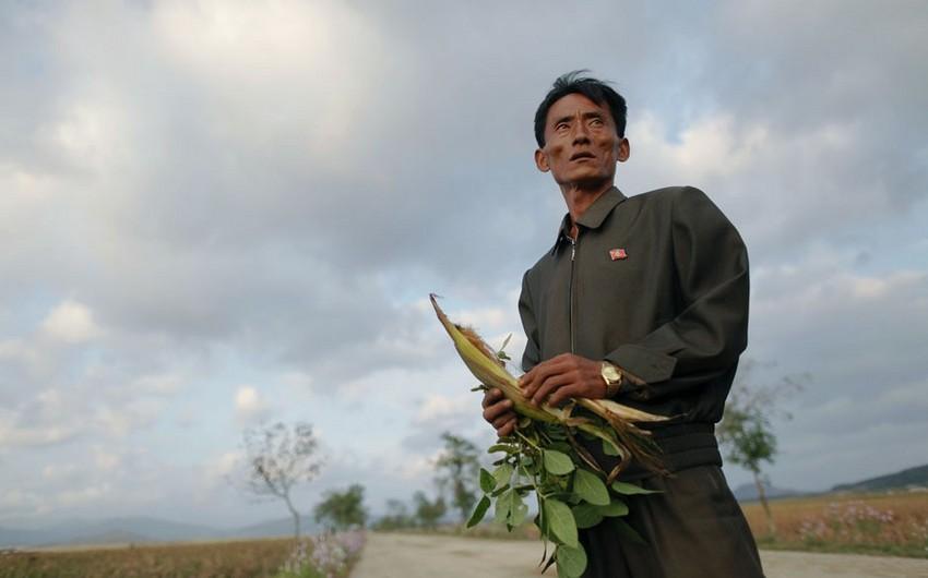 KXDR əhalisinin 40%-dən çoxu az qidalanmadan əziyyət çəkir