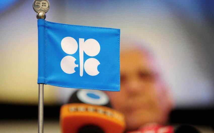 Fitch: OPEC-in qərarı neft qiymətlərini dəstəkləyə bilər