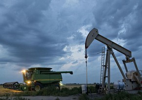 US oil stocks rise unexpectedly over week