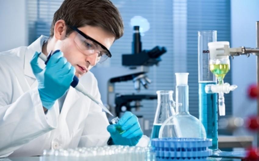 ÜST: Avropa və Rusiyada qrip viruslarının 80 faizi donuz qripinin payına düşür