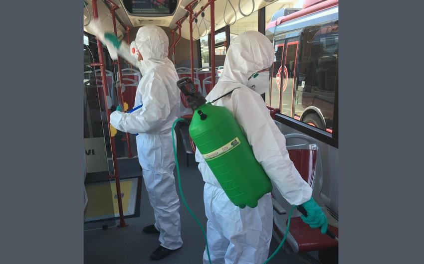 Həkim-ftiziatr: Avtobuslarda dezinfeksiya işlərinin aparılmaması vərəm xəstəliyinin yayılmasına səbəb ola bilər