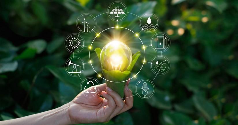 'GREEN LIGHT' - key issue on agenda