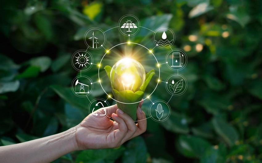 """""""Yaşıl"""" enerjiyə yaşıl işıq"""