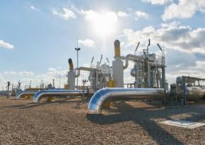 TAP İlin təbii qaz, LNG və hidrogen layihəsi nominasiyasında qalib olub