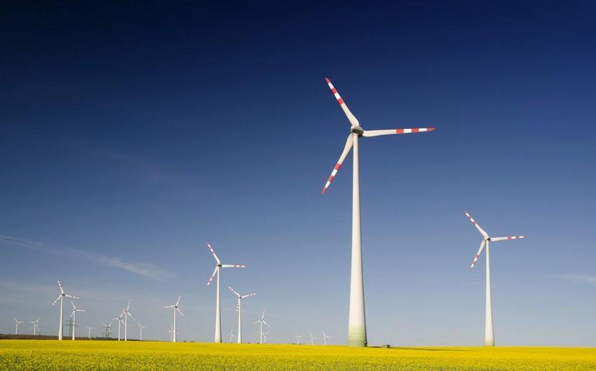 Professor: Alternativ enerji növlərindən istifadə ekoloji cəhətdən zərərsizdir