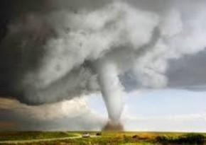 Yeni Zelandiyada tornado bir nəfərin həyatına son qoyub
