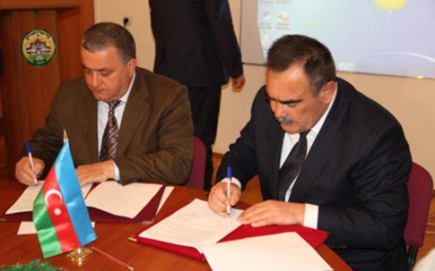 Dövlət Aqrar Universiteti üç fermer təsərrüfatı ilə müqavilə imzalayıb
