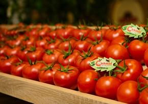 Turkmen tomatoes enter Austrian market