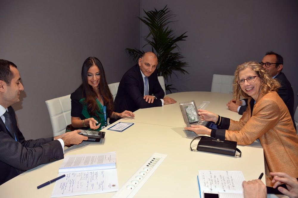 Лейла Алиева: Для расширения сотрудничества между IDEA и IUCN есть хороший потенциал