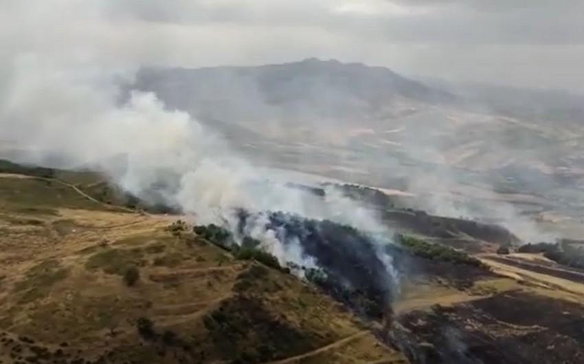 Qırmızı Bazar istiqamətindəki yanğınla bağlı rəsmi məlumat - VİDEO