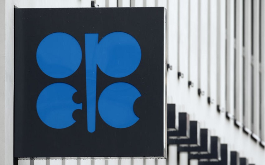 Səudiyyə Ərəbistanı: OPEC üzvləri razılığa gəməyəcək
