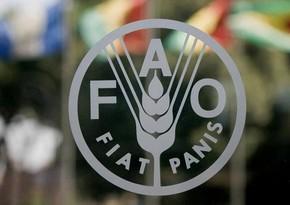 FAO Azərbaycanda Süni Mayalanma Mərkəzinin fəaliyyətinə dəstək göstərib