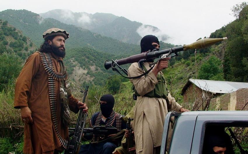 """Pəncşirdə """"Taliban""""ın 600 silahlısı məhv edilib"""