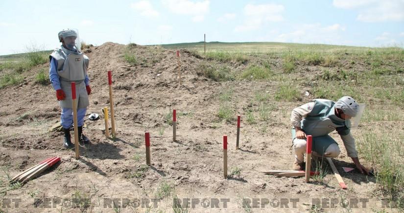 Azad olunan ərazilərdə aşkarlanan minaların sayı açıqlanıb