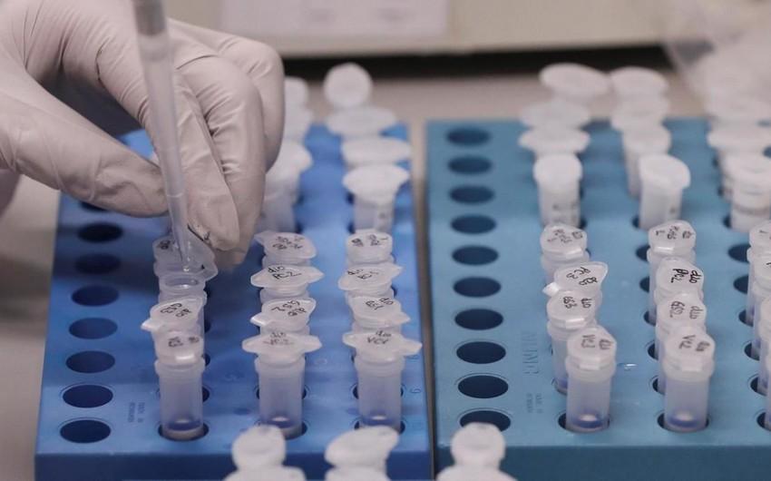 Вирусолог назвал опасность южноафриканскогоштамма коронавируса