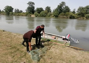 Более 53 километров бассейна реки Кура очищены от синтетических сетей