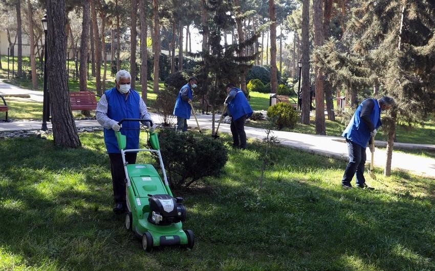 Azerbaijan opens 18,000 paid public jobs