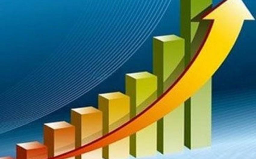 Gürcüstanda iqtisadi artım 16%-dən çox azalıb