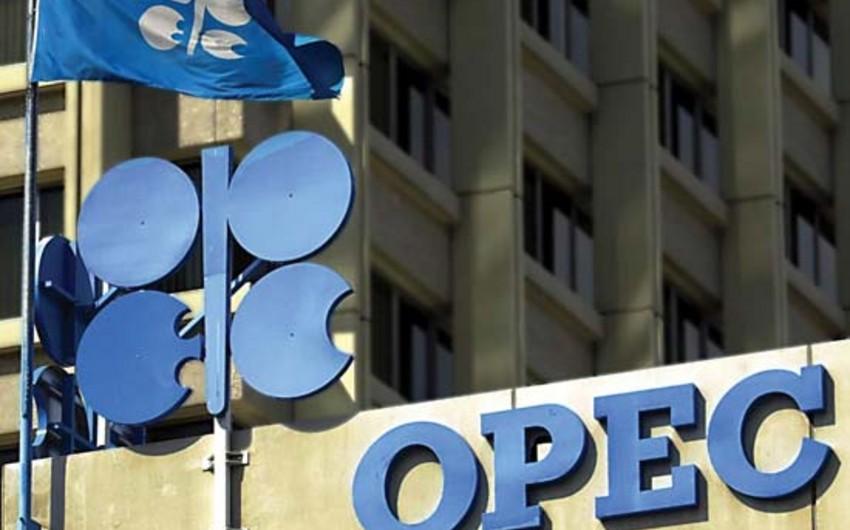 OPEC neft hasilatını 8 illik maksimuma çatdırıb