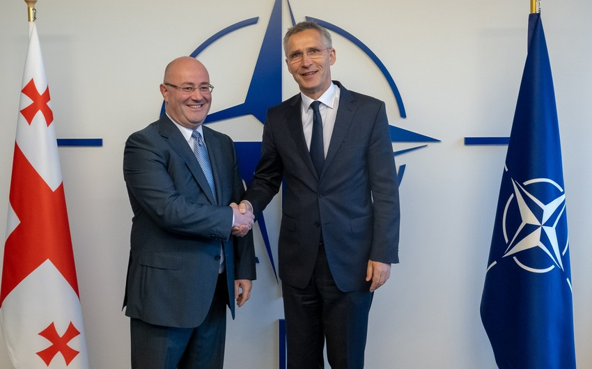 Gürcüstanın müdafiə naziri NATO-nun baş katibi ilə görüşüb