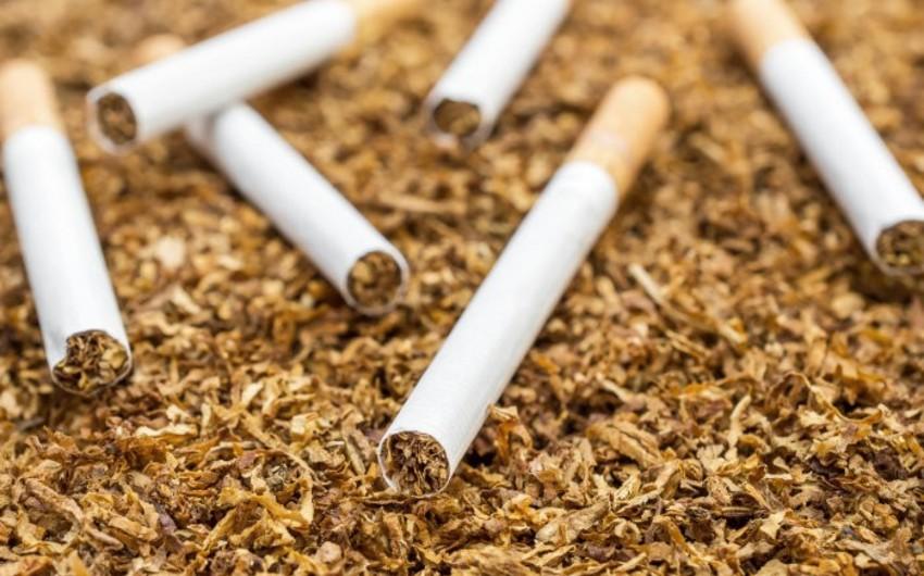 Табачные изделия экспорт как купить новичку сигареты