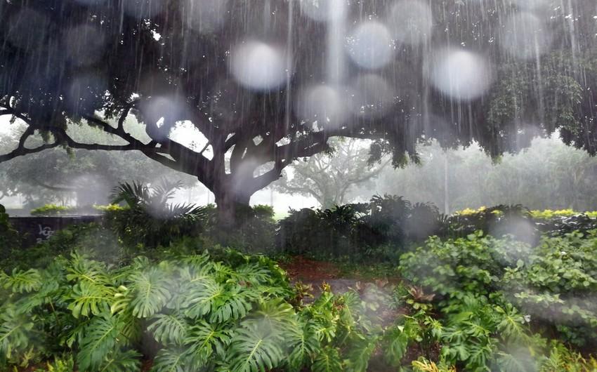 Sabah Azərbaycanda intensiv yağış və qar yağacaq, güclü külək əsəcək - XƏBƏRDARLIQ