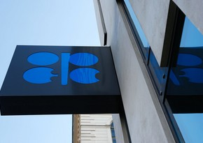 OPEC members taking part in cuts turned in a compliance rate of 106%: IEA