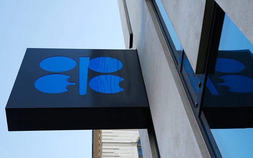 OPEC+ razılaşmasının yerinə yetirilməsi dəyərləndirildi
