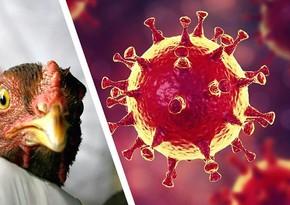 Врач назвал возможную причину новой пандемии